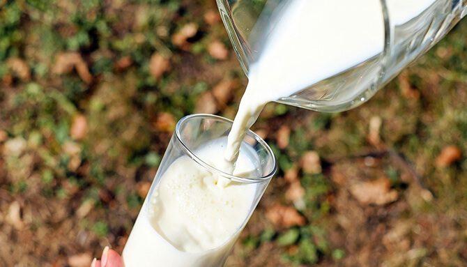 Mlieko a mliečne výrobky – piť či nepiť?
